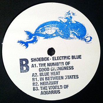 Shoebox - Electric Blue